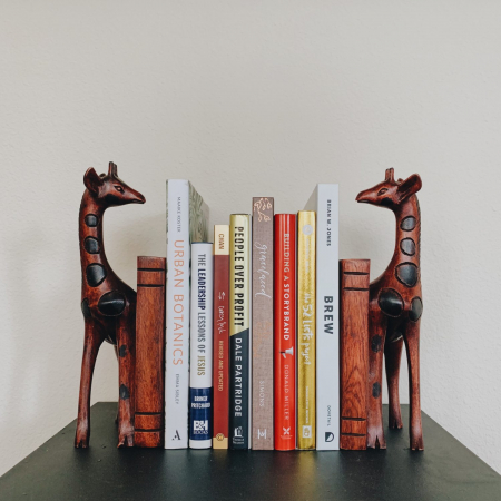 Giraffe Bookends